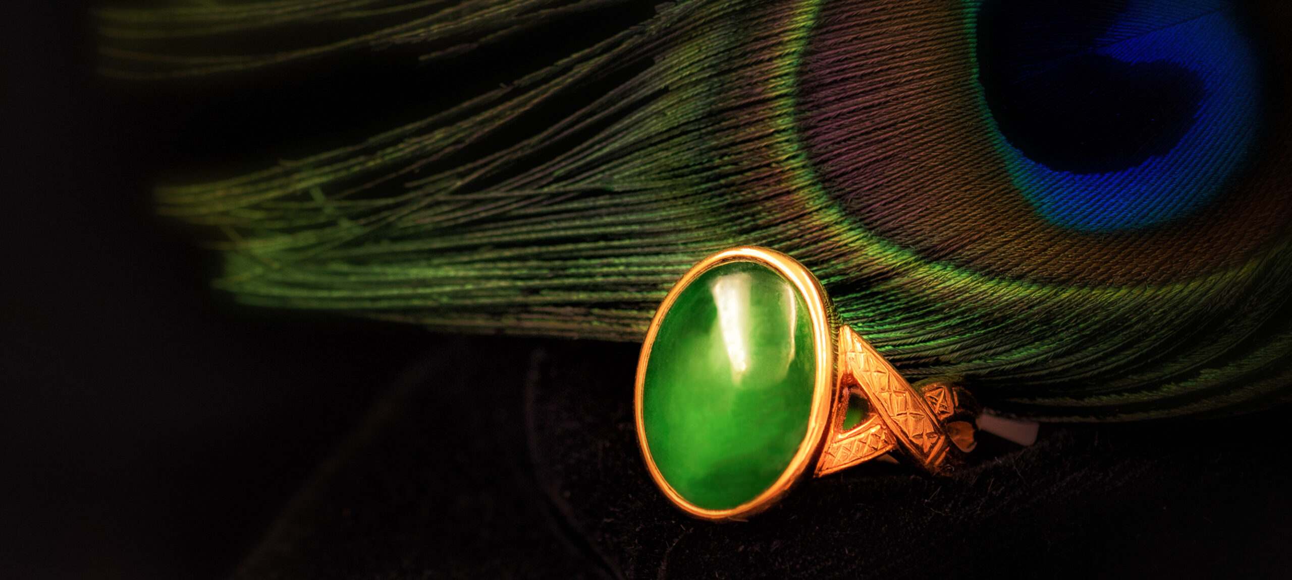 Green Jade ring against a peacock feather