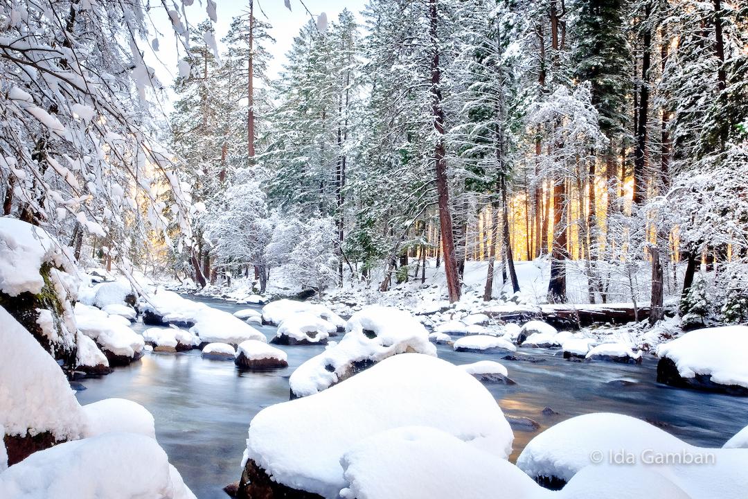 Snowy Merced River - Yosemite by Ida Gamban